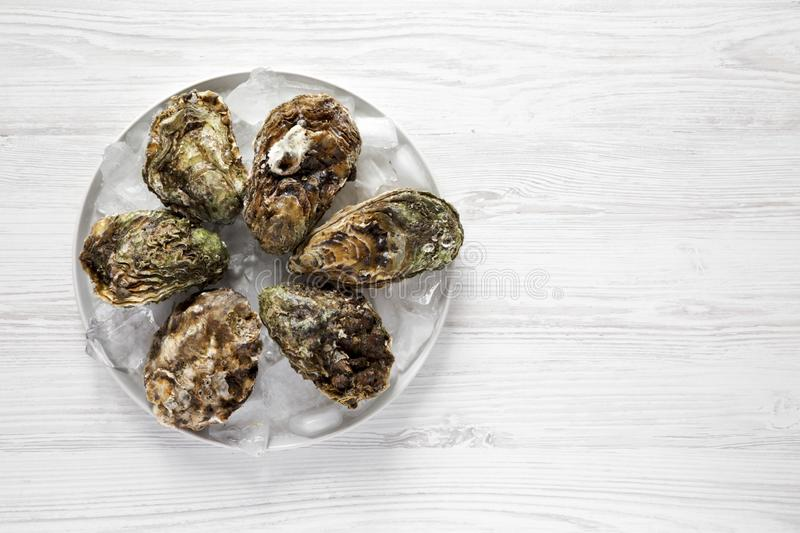 Fresh oysters on ice on gray plate over white wooden background, top view. Flat lay, overhead, from above. Copy space stock images