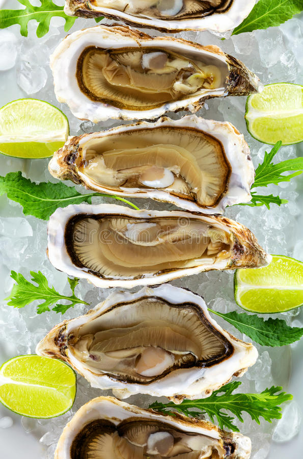 Fresh oysters on ice with pieces of lime stock photography