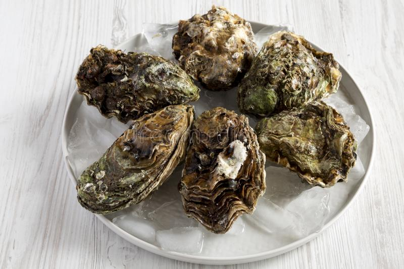 Fresh oysters on ice on a plate over white wooden surface, side view. Closeup stock photo