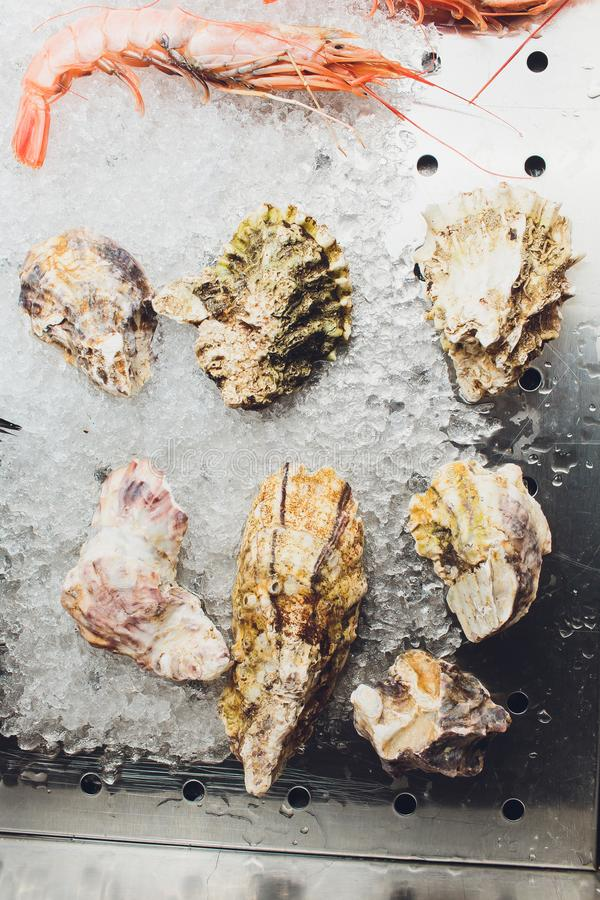Fresh oysters on ice in the seafood market. stock photo