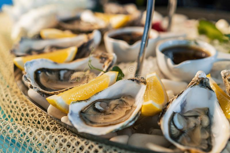 Fresh oysters with lemon on white plate in restaurant royalty free stock images