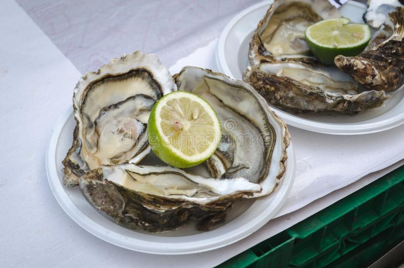 Fresh oysters with lime on the fish market stock photography