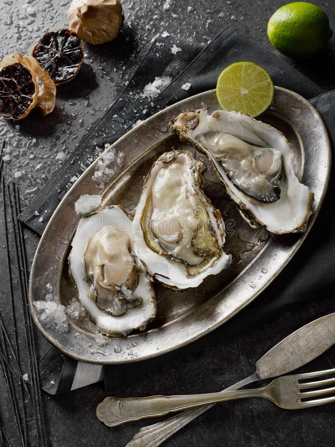 Oysters with lime stock photography