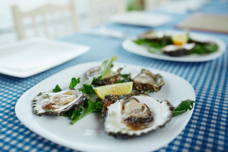 Fresh oysters on a white plate with green salad and lemon on a blue tablecloth stock image