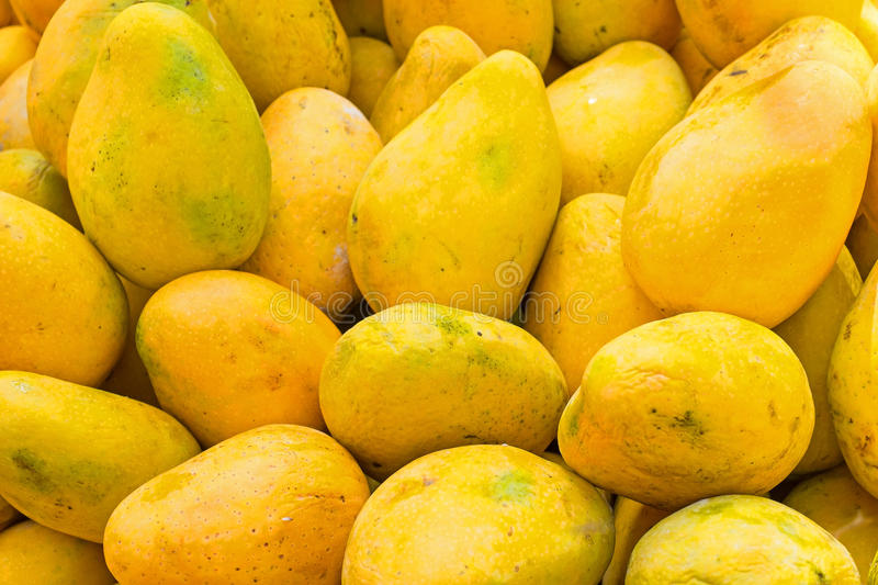 Fresh papayas in a market stall in India stock images
