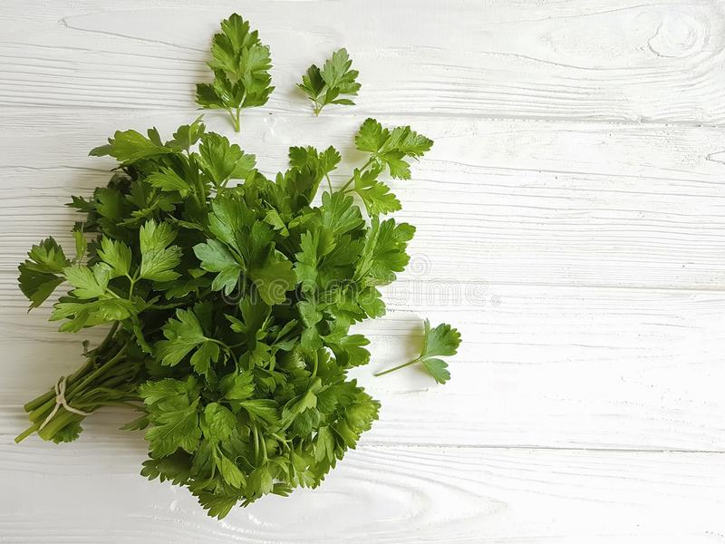 Fresh parsley bunches seasoning on a white wooden background. Fresh parsley bunches on a white wooden background natural aromatic seasoning royalty free stock photo