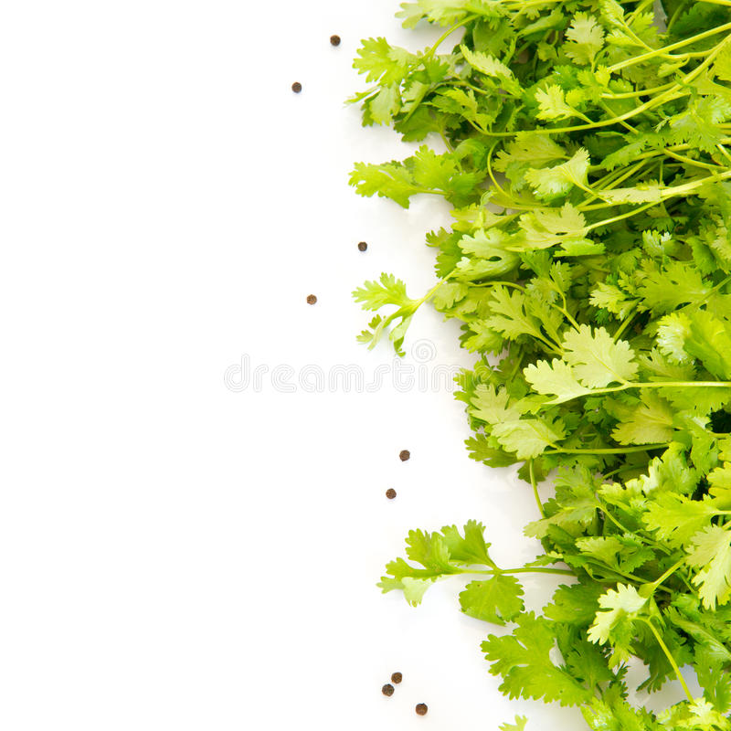Fresh parsley and peppers isolated on white backgr royalty free stock photography