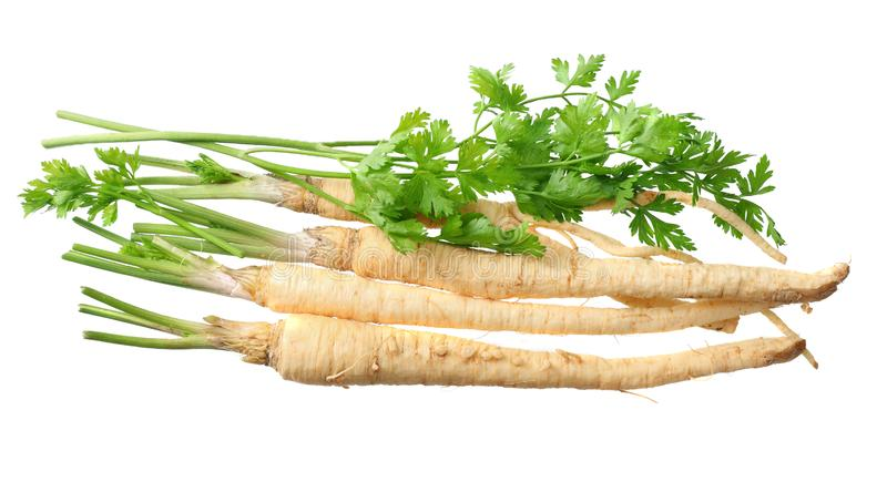 Fresh parsley root isolated on white background. top view royalty free stock photography