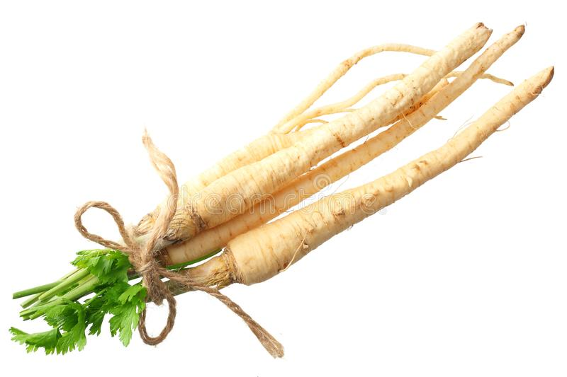 Fresh parsley root isolated on white background. top view stock images