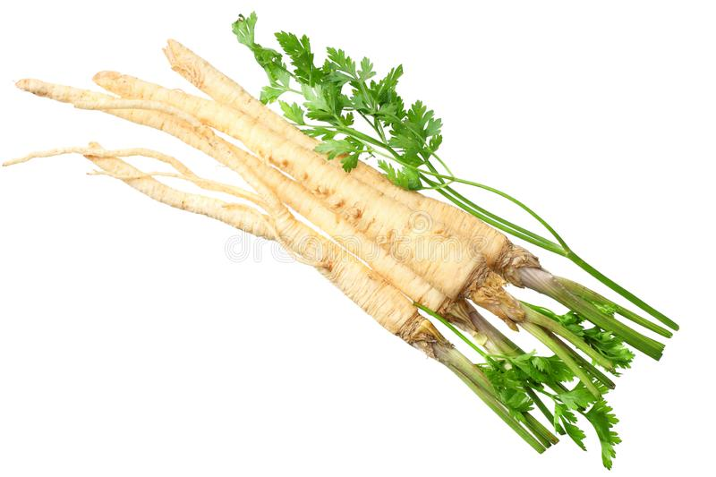 Fresh parsley root isolated on white background. top view royalty free stock photos