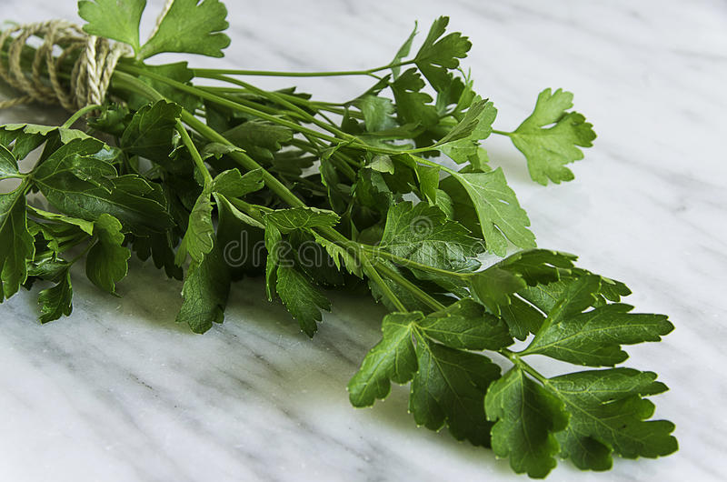 Fresh parsley on a white stone background. Parsley on white stone background stock photo
