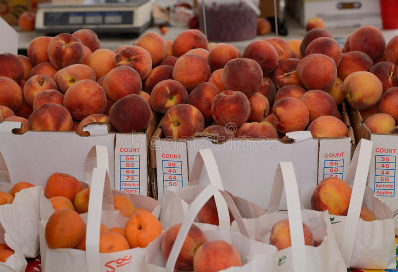 Fresh peaches and apricots royalty free stock images