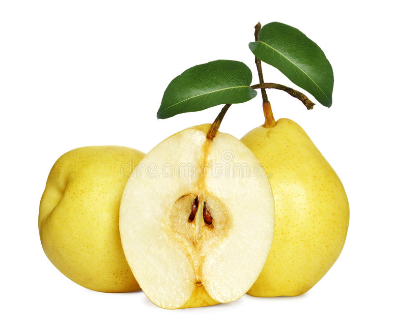 Download Fresh pears stock photo. Image of pear, green, juicy - 25272178
