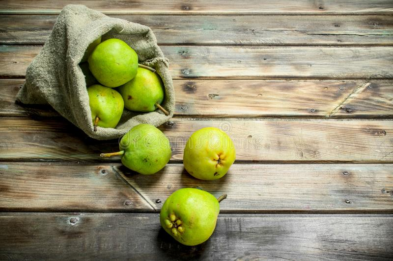 Fresh pears in the sack royalty free stock photo