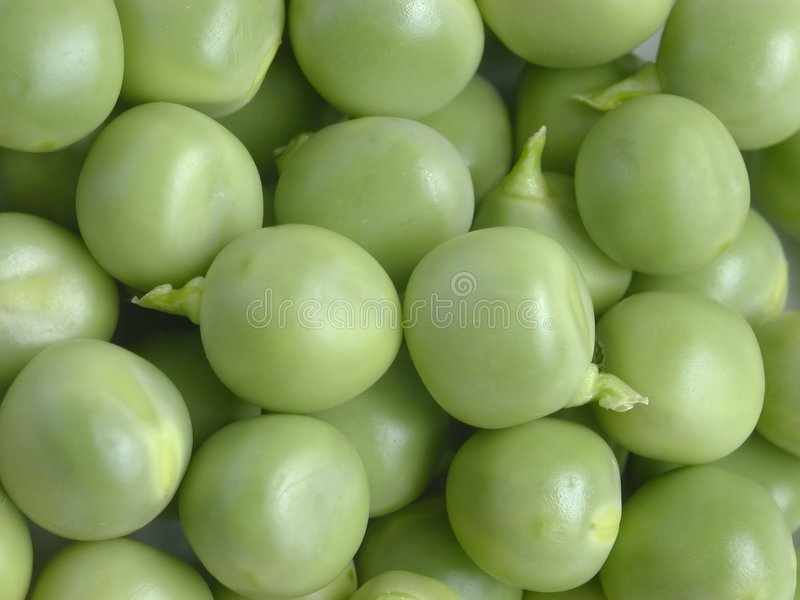 Download Fresh Peas stock image. Image of vegetables, food, texture - 11225