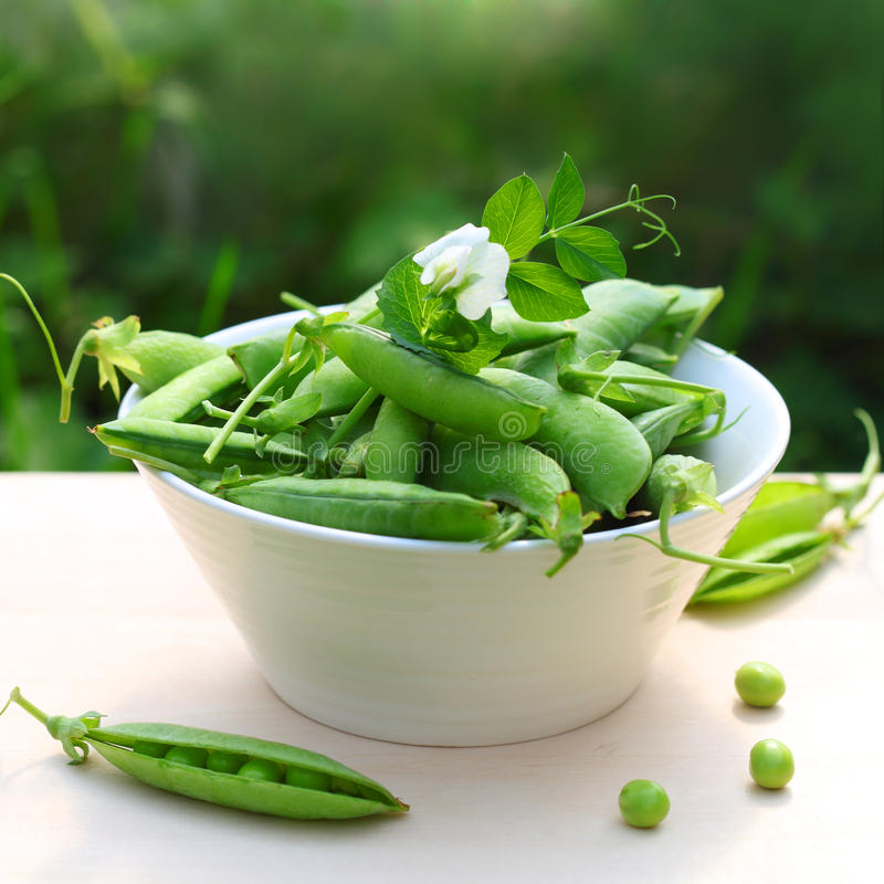 Free Fresh Peas In A White Bowl Stock Images - 15953704