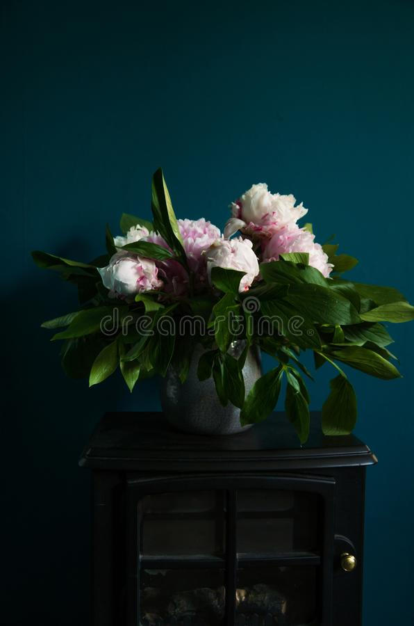Free Fresh Peony Flowers On Petrol Blue Background And Fireplace Stock Images - 117567584