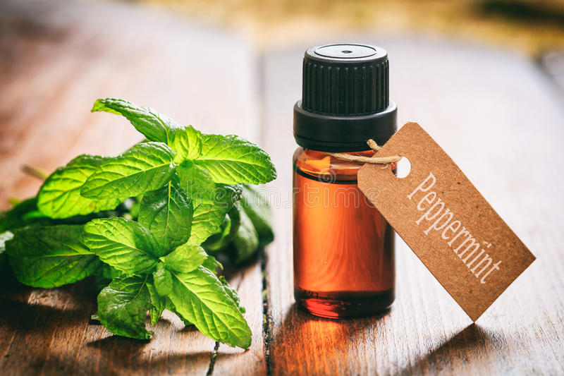 Fresh peppermint and oil on wooden background stock photos
