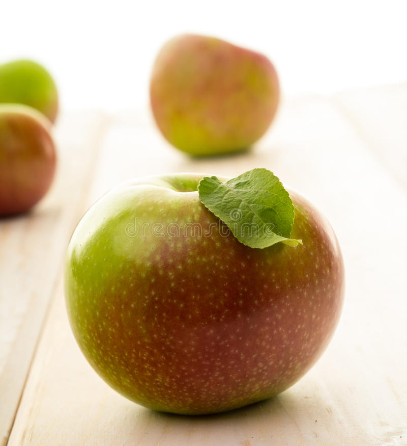 Download Fresh Picked Apples stock image. Image of apple, picking - 26639047