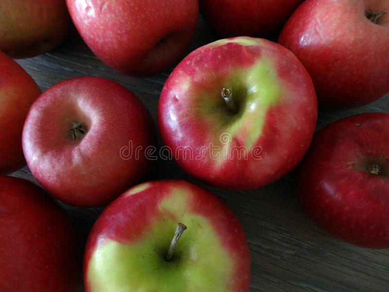 Fresh Picked Apples on Farm Table royalty free stock image