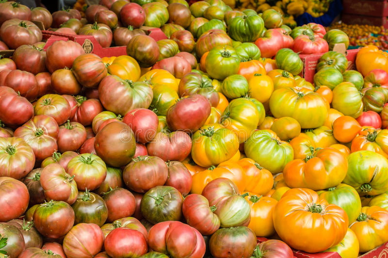 Fresh picked heirloom tomatoes royalty free stock photos