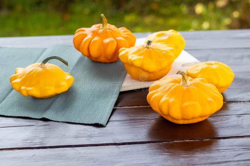 Yellow and orange summer squash, small pumpkins on a wooden table outdoors, autumn harvest, thanksgiving and farm food concept. Fresh picked summer squash, small royalty free stock photo