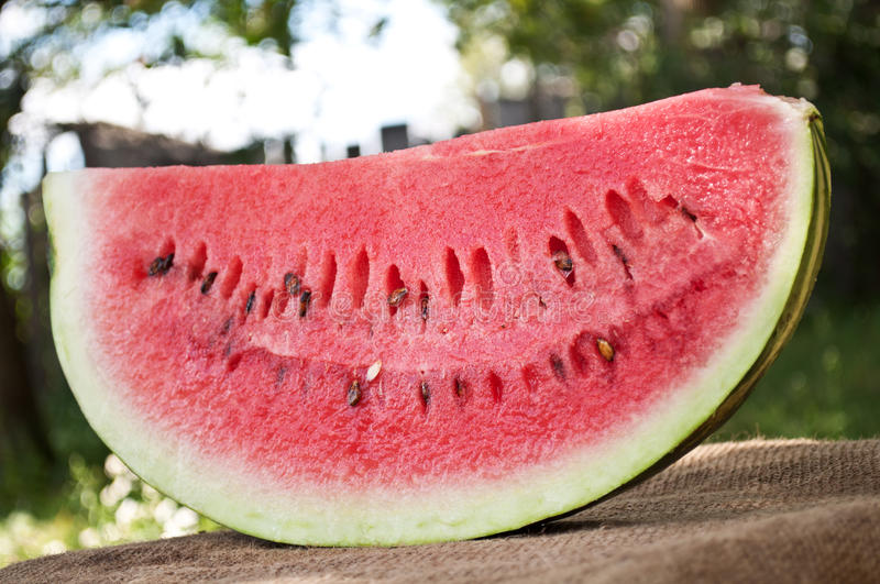 Download Fresh piece of watermelon stock image. Image of refreshment - 21145525