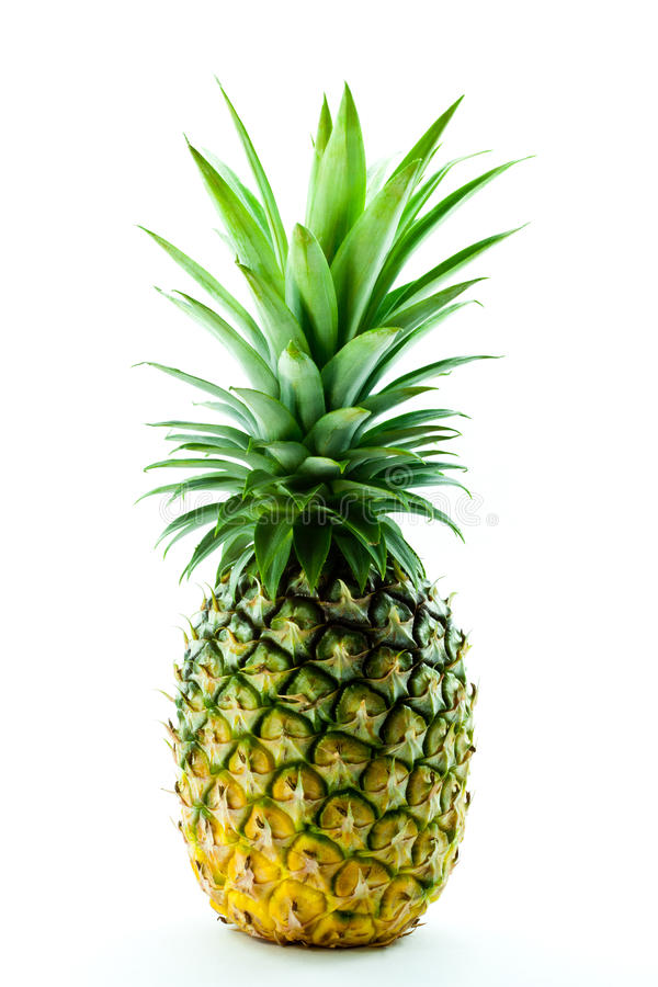 Fresh pineapple. A fresh pineapple isolated on white background royalty free stock image