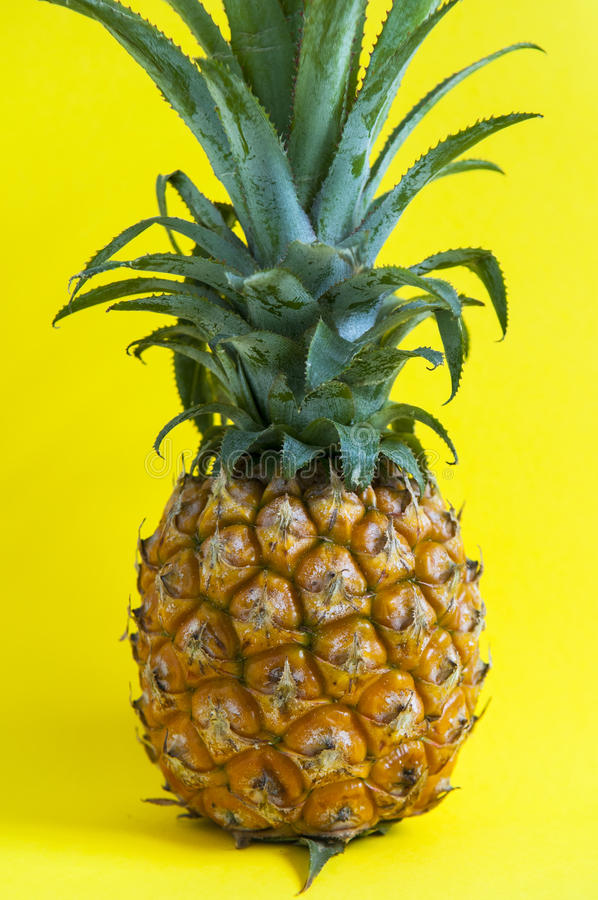 Fresh pineapple on the background royalty free stock photo