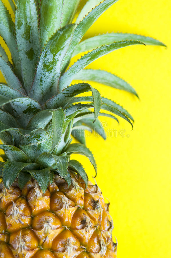 Fresh pineapple on the background stock image