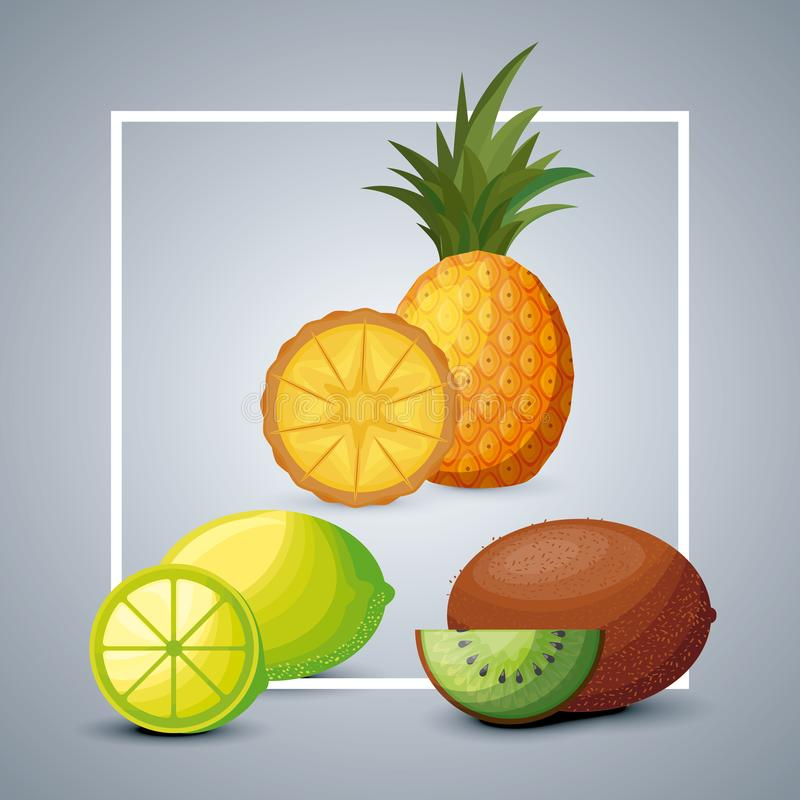 Fresh pineapple with lemon and kiwi stock illustration