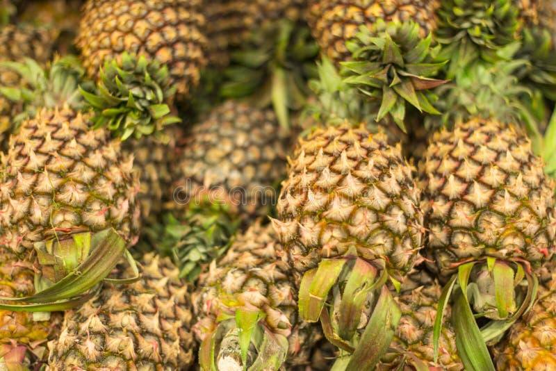 Fresh Pineapple. Pile of fresh tropical pineapple fruit royalty free stock photos