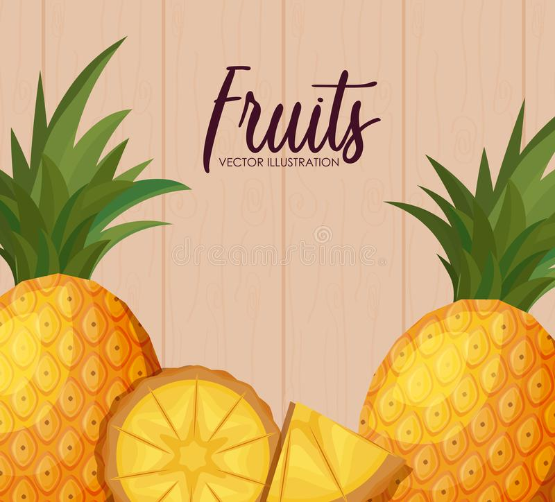 Fresh pineapples fruits with sliced vector illustration