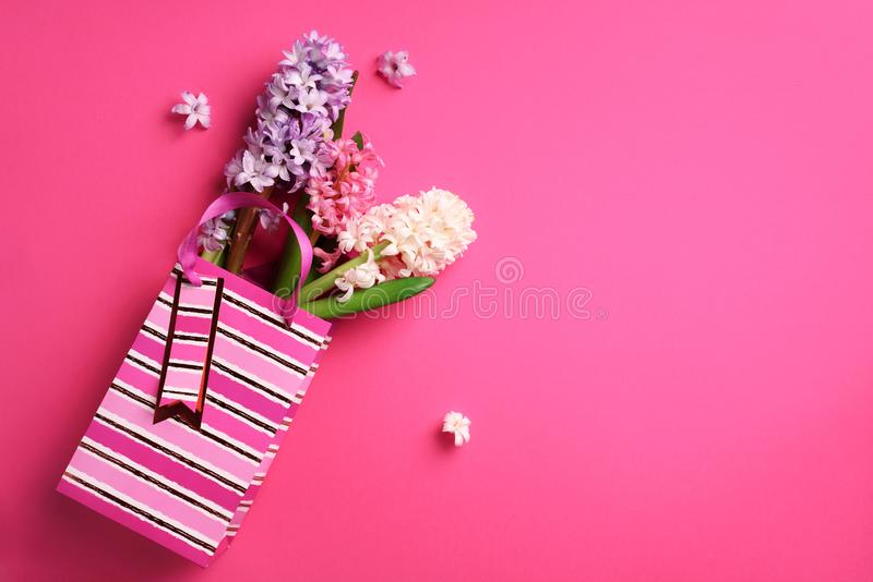 Fresh pink, white, violet hyacinth flowers in shopping bag on punchy pastel background. Banner with copy space. Spring, summer or royalty free stock images