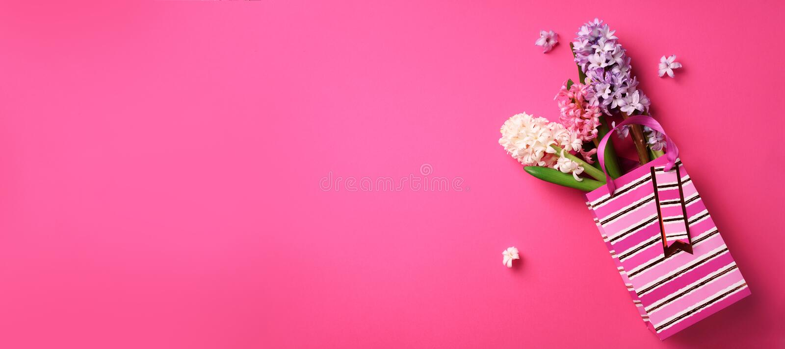 Fresh pink, white, violet hyacinth flowers in shopping bag on punchy pastel background. Banner with copy space. Spring, summer or stock image