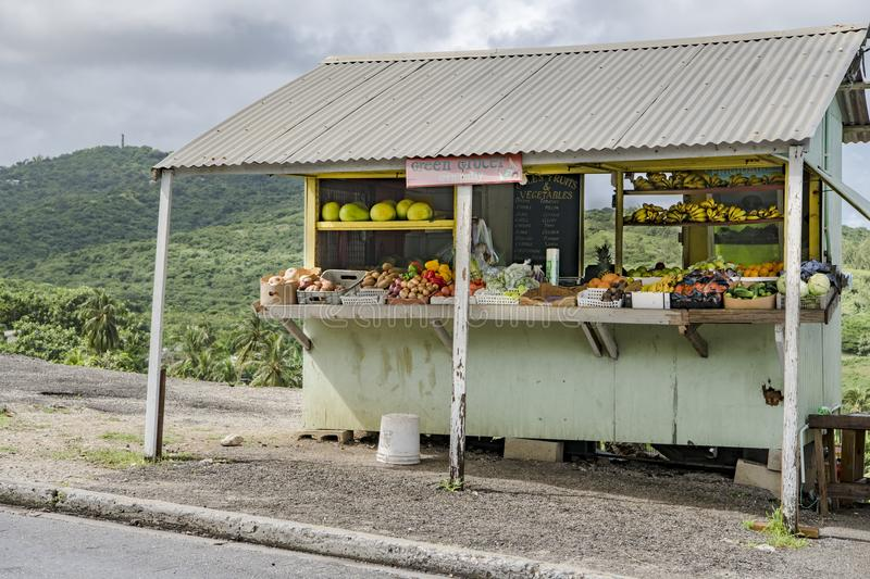 Fresh harvested fruits and vegetables from green grocer, Barbados stock photos