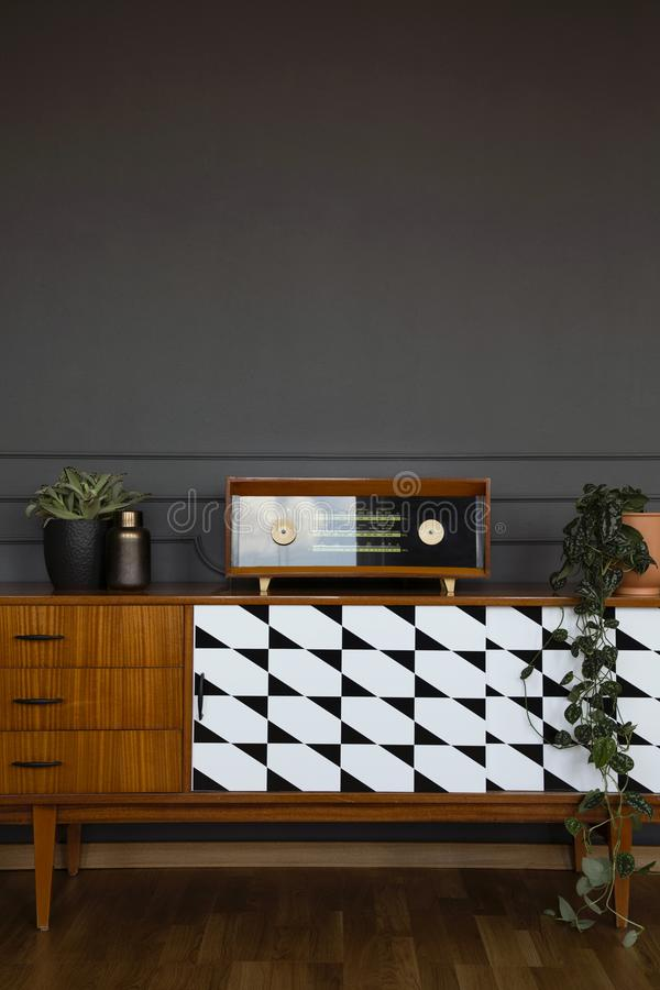 Fresh plants and vintage radio placed on wooden cupboard royalty free stock image