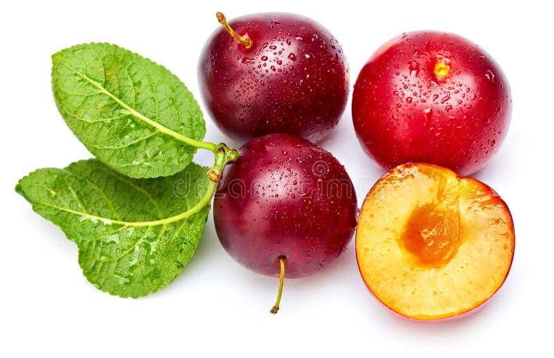 Fresh plum in cut with green leaf. stock photos
