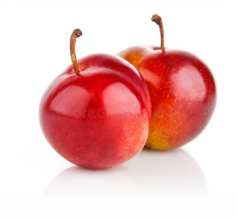 Fresh plum fruits isolated on white royalty free stock images