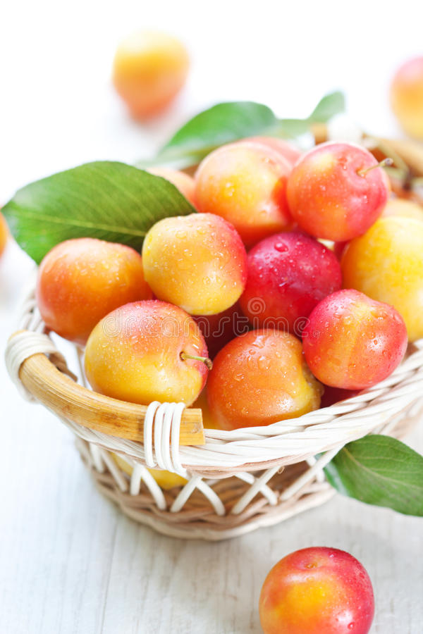 Free Fresh Plums Stock Photography - 20726152