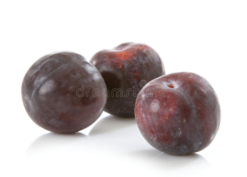 Download Fresh plums stock image. Image of dessert, agriculture - 24612707