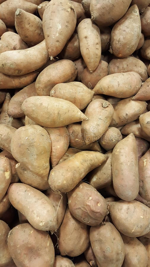 Fresh potatoes background. Carbohydrates royalty free stock images