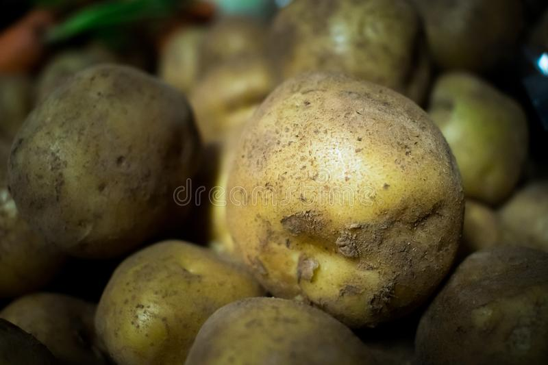 Fresh potatoes piled together at the fresh market stock image