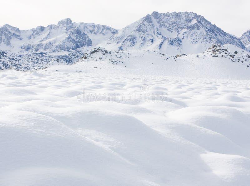 Download Fresh Powder stock image. Image of alone, nature, november - 462963