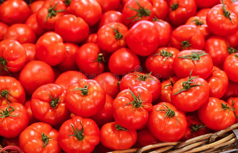 Fresh produce-Tomatoes in Australian market. Fresh produce-Red Italian Tomatoes in Australian Victoria market in Melbourne stock photos