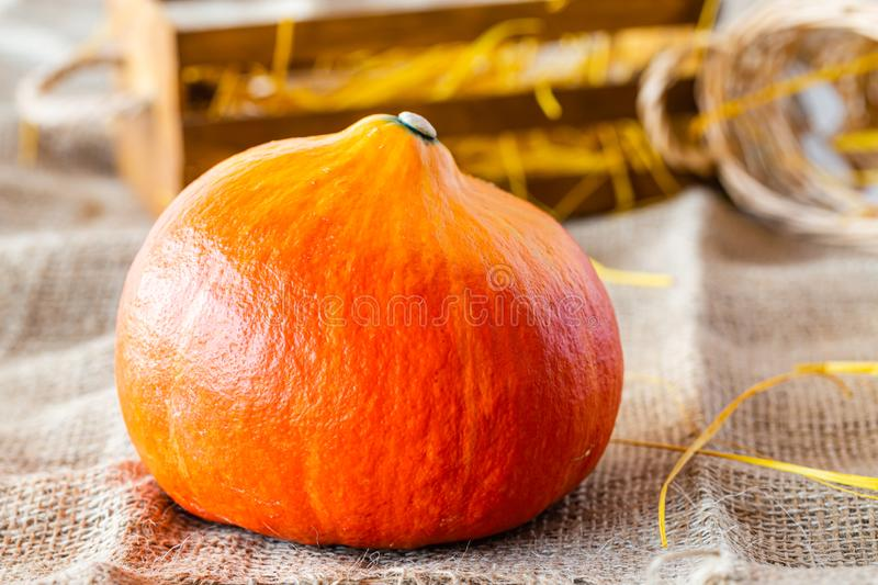 Fresh Pumpkin. Autumn fruits and vegetables. Autumn colors. Vibrant colors. Pumpkin, nuts and pear. Stocks for winter. Autumn is c royalty free stock photography