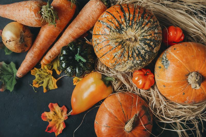 fresh pumpkin, bell pepper, carrot, onion, autumn leaves, vegetables, autumn harvest, top view, hay royalty free stock photos