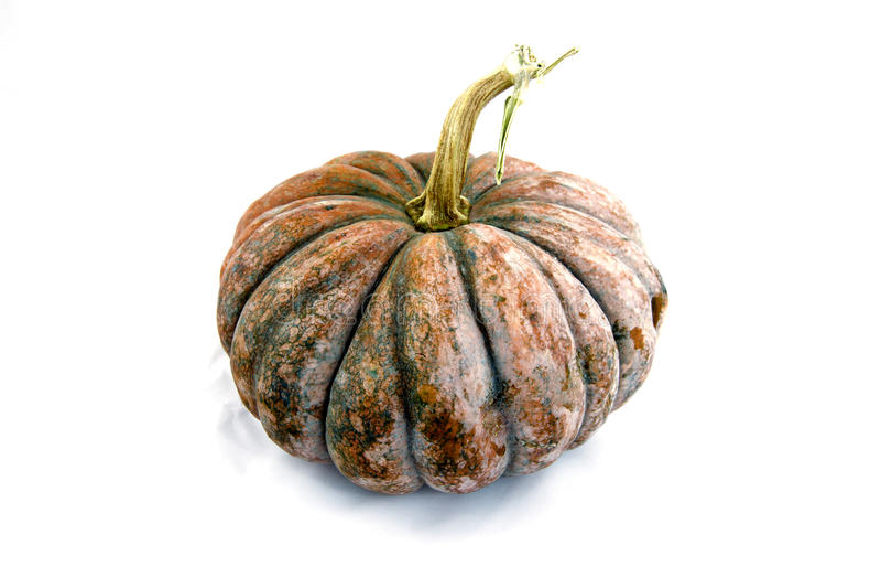 Fresh pumpkin isolated on white background stock photo