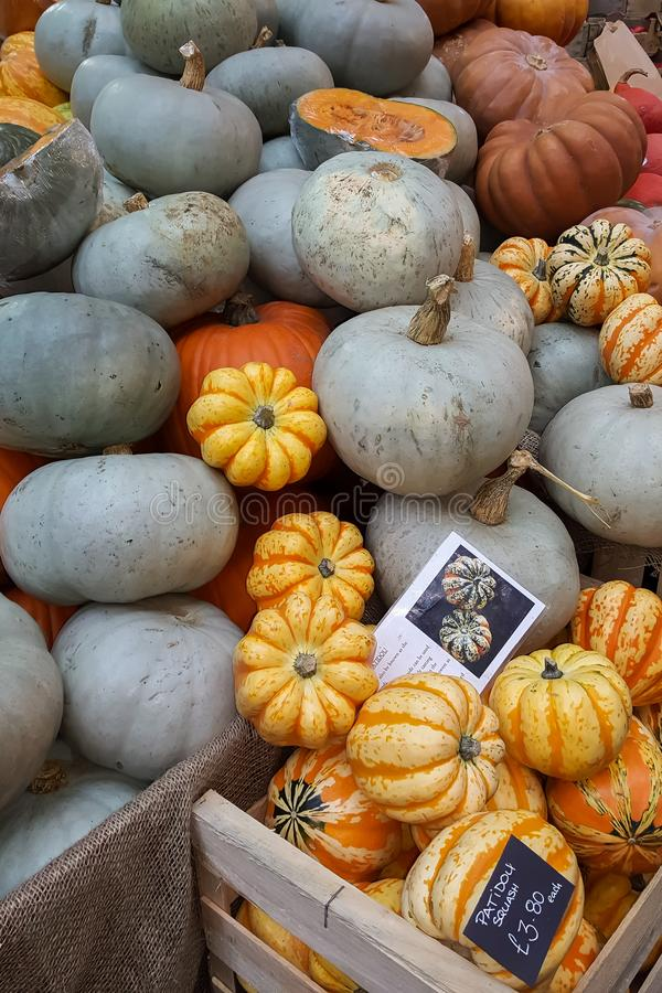 Fresh pumpkins for sale in the marketplace stock image