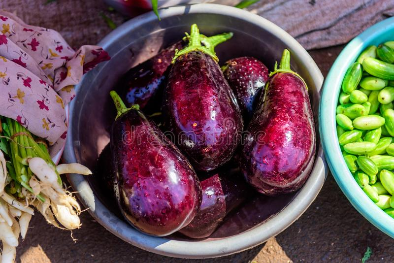 Fresh purple eggplant in metal basin on the market. Close-up view of raw aubergine with water drops. Vegan food.  stock image